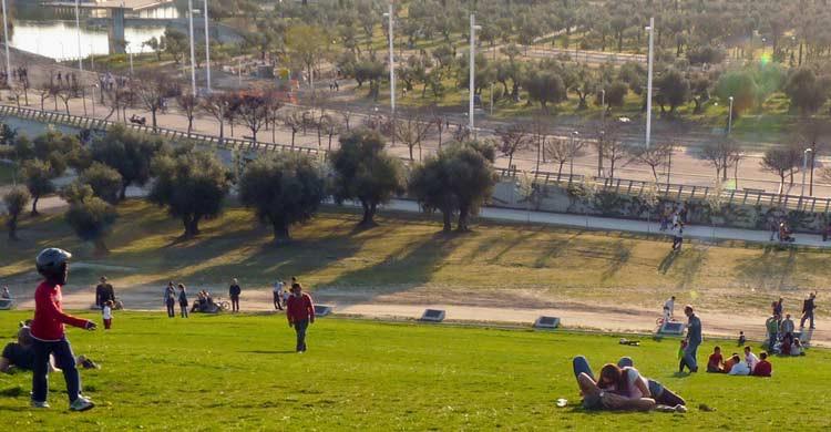 Parque Juan Carlos I. Uvep3 (Flickr)