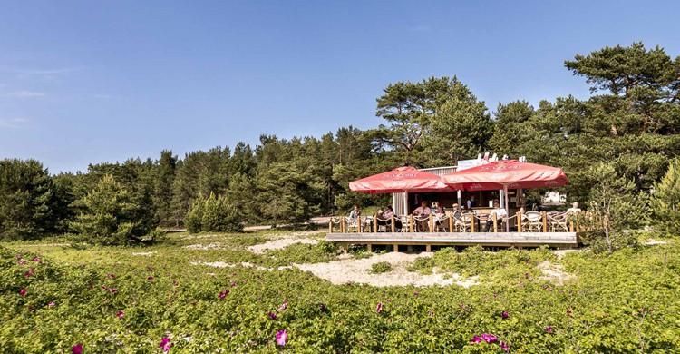 Espectacular restaurante en el Hotel Spa Laulasmaa (http://www.laulasmaa.ee/)