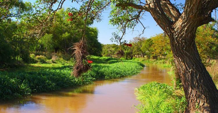 Una de las vistas del parque. Julián Alonso (http://www.parquesnacionales.gob.ar/)