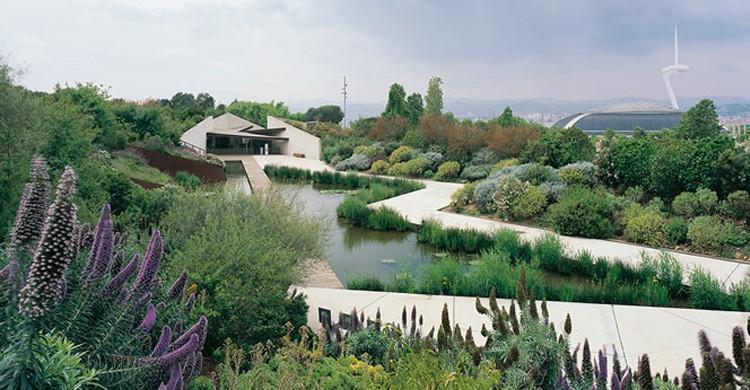 Vistas sobre el jardín. Jardí Botànic de Barcelona (Visit Barcelona)