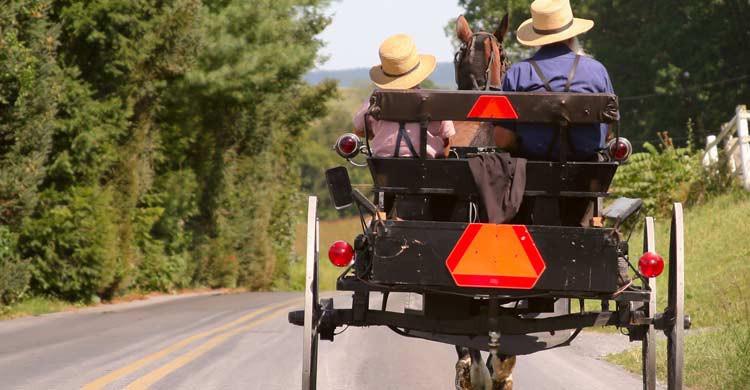 Los amish se desplazan con carros de caballos (iStock)