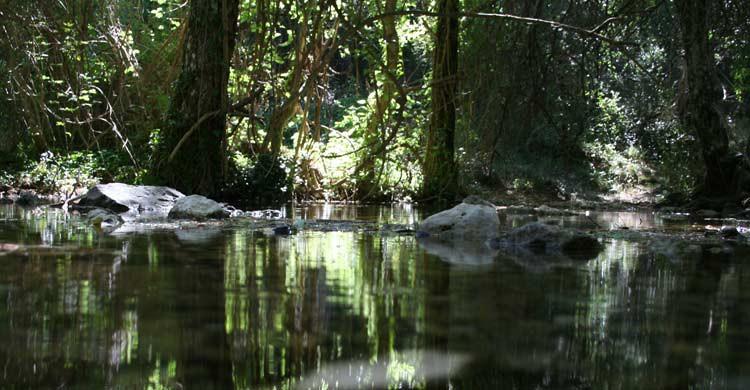 Nacimiento del río Mundo (wikimedia.org)