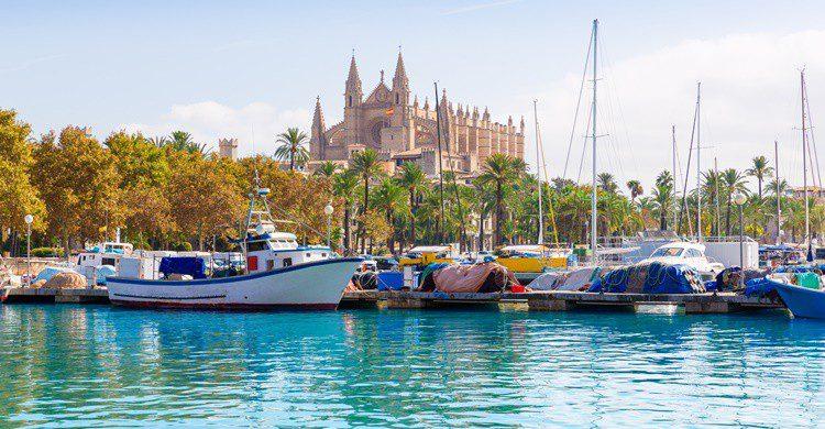 Puerto y catedral de Palma de Mallorca. LUNAMARINA (iStock)