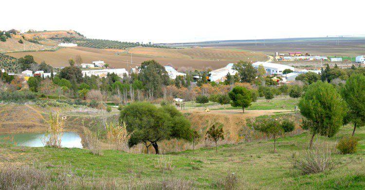 Vistas de la Comarca de La Janda desde la Muela ( Juan Jiménez Martínez-Flickr)