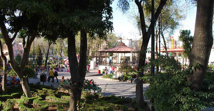 Jardín Hidalgo (iStock)