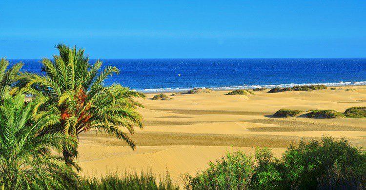 Playa y dunas en Maspalomas. Nito100 (iStock)