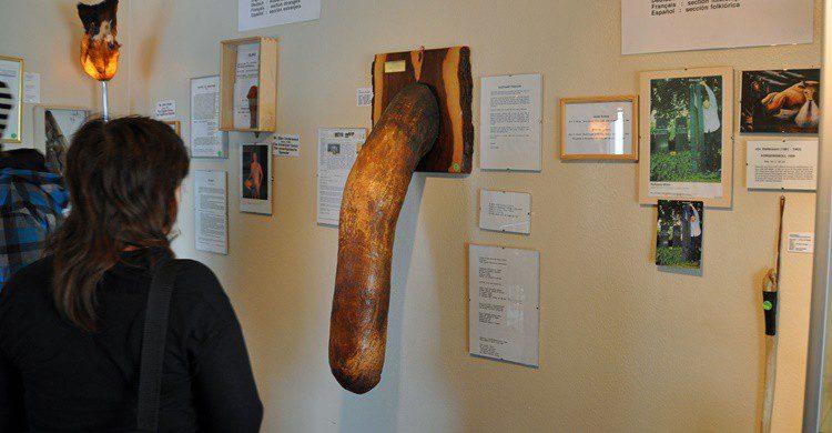 Visitante en el museo (http://phallus.is/es/fotos.html)