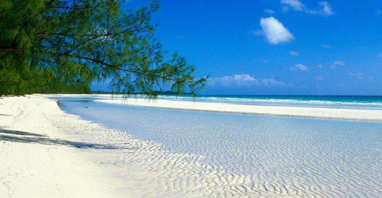 Pemba es una de las islas del archipiélago de Zanzíbar (tanzaniasafariszanzibartravel.org)