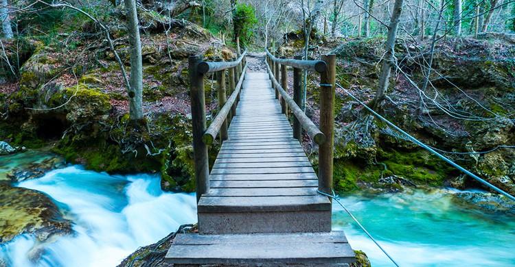 Puente sobre el río Urederra en su nacimiento (Nemosineaudiovisual, Wikipedia)