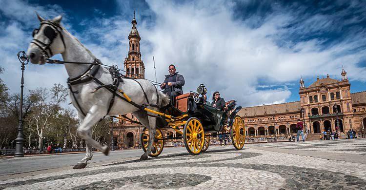 Carruaje tipico de Sevilla