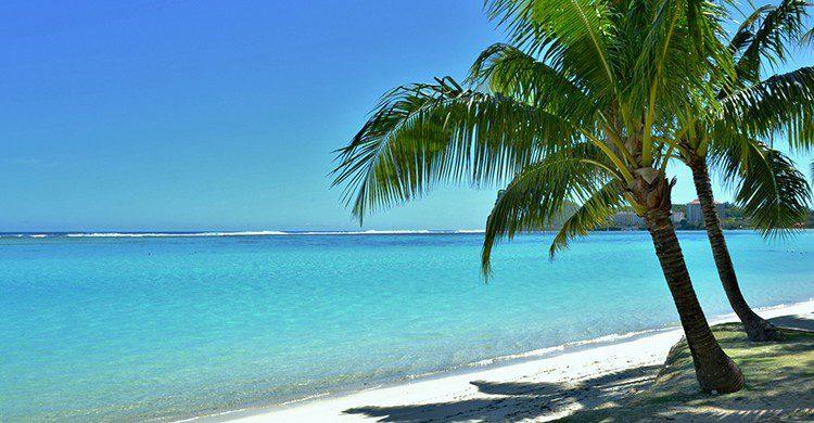 Una playa tropical con palmeras en Una playa tropical con palmeras en Guam