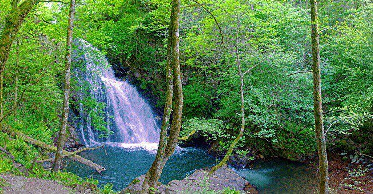 Cascada de Xorroxin. PerroVerd (Flickr)