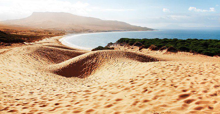 Playa virgen en Bolonia, Cádiz