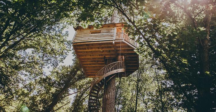 Vista de una de las cabañas (Web de Cabañas en los árboles Euskadi)