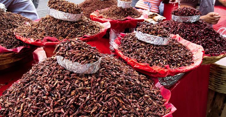 Chapulines en un mercado mexicano
