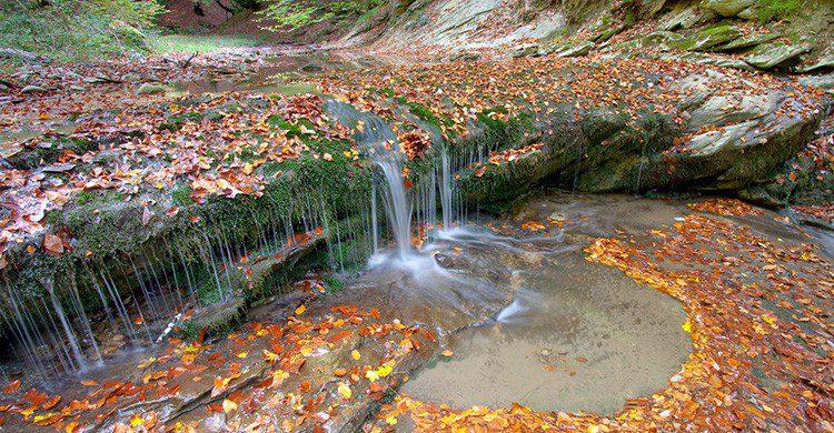 Cascada en la Selva de Irati, Navarra
