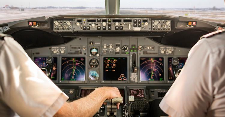 choque de pajaro con avion
