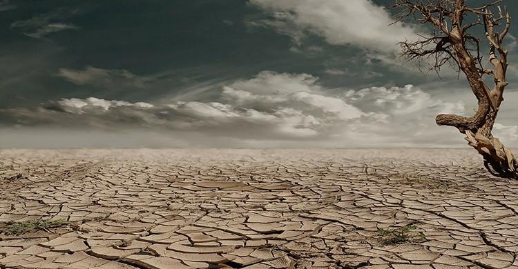 Imagen de sequía