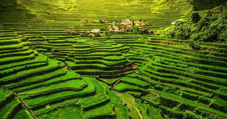Terrazas, Filipinas.