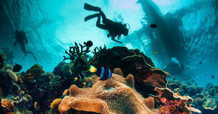 Submarinismo en Filipinas (iStock)