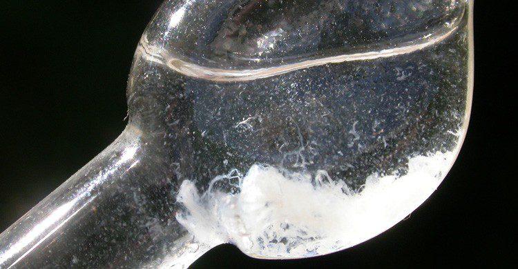 El ADN formará parte del sexo del futuro (Fuente: Jip De Kort / Flickr)