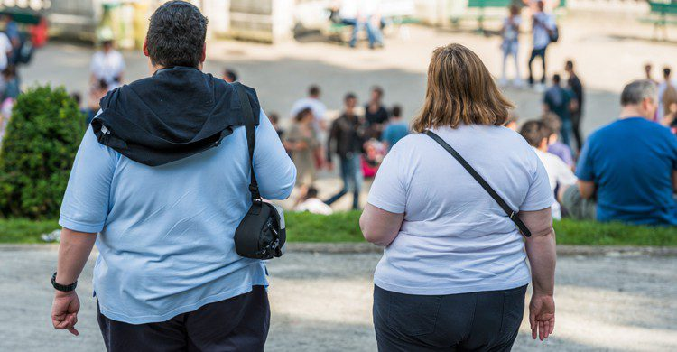 tasas de obesidad en España