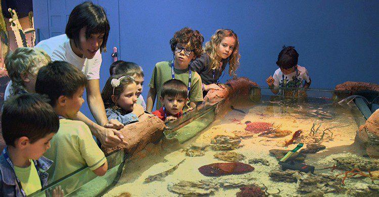 Niños en el Museo de Ciencia Eureka!