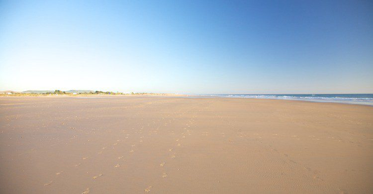 Playa de Castilnovo en Conil, Cádiz (Fuente: iStock)