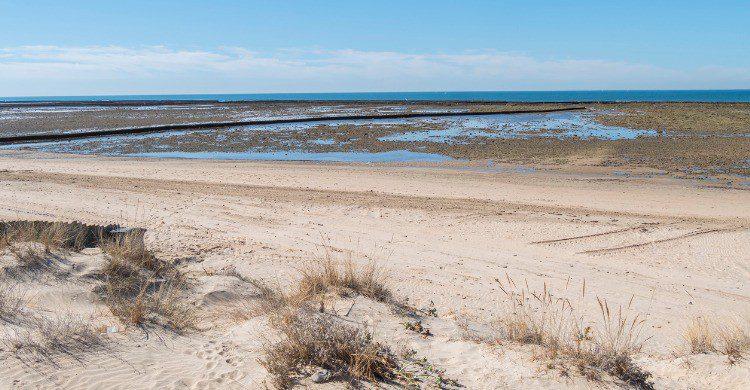 Playa de Punta Candor en Rota, Cádiz (Fuente: iStock)