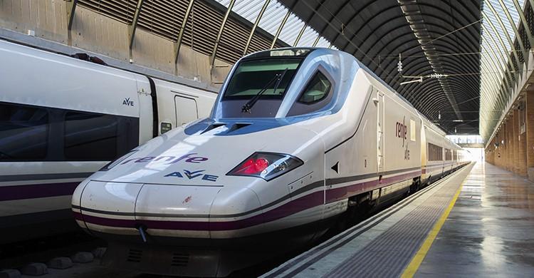 Uno de los trenes de Renfe (iStock)