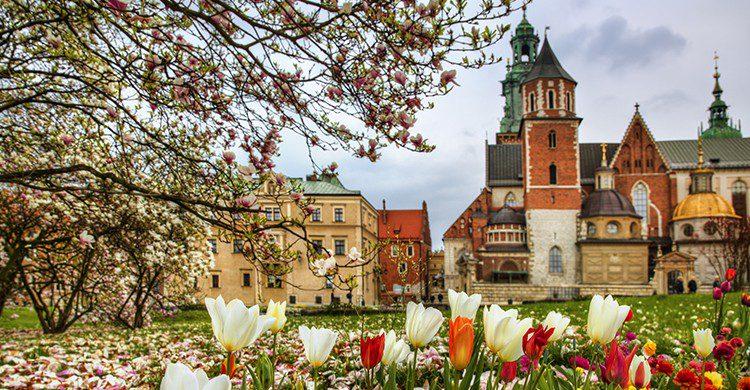 Polonia un referente de belleza en Europa(Istock)