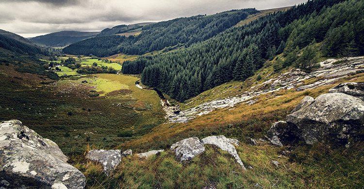 Excursión a las montañas de Wicklow(iStock)