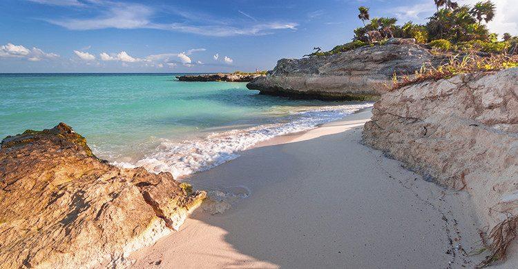 Playa en el mar Caribe en Playa del Carmen(Istock)